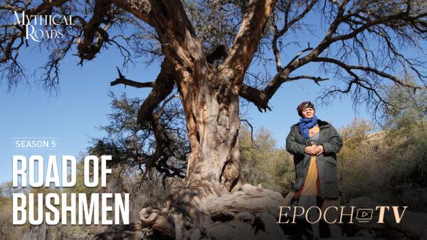 The Road of Bushmen