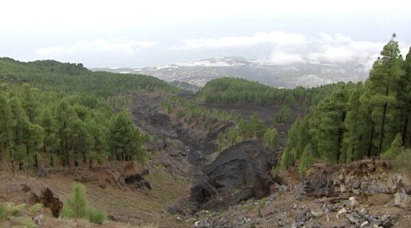 Teneguia volcano