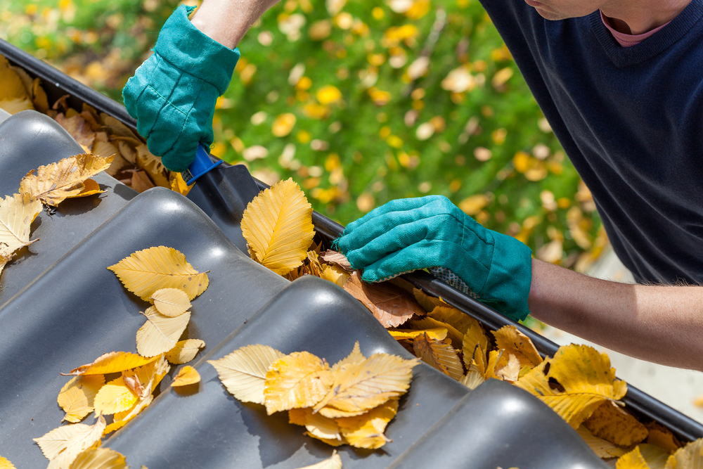 Man,Cleaning,The,Gutter,From,Autumn,Leaves