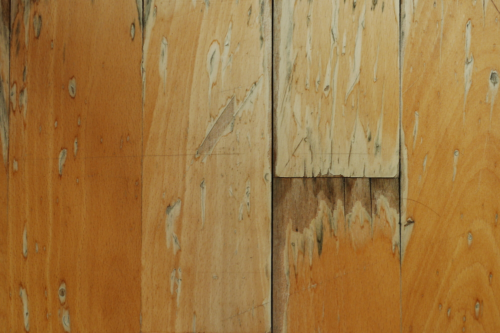 Wood,Floor,(damaged,By,Water)