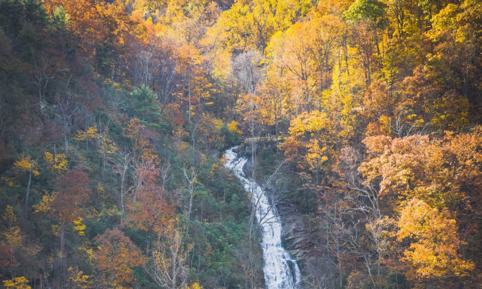 Cool water splashes and tumbles down 1,200 feet at Crabtree Falls in Nelson County, Va. (Courtesy of Virginia Tourism Corp.)