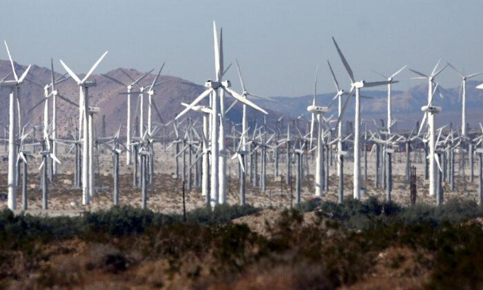 A windfarm near Palm Springs, Calif., on Dec. 30, 2006.  (Gabriel Bouys/AFP via Getty Images)