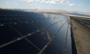 US Solar Companies Warn That Proposed Tariffs Would Devastate New Projects