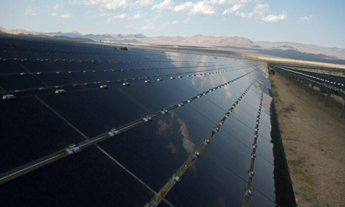 Solar panels are seen at the Desert Stateline project near Nipton, Calif., on Aug. 16, 2021. (Bridget Bennett/Reuters)