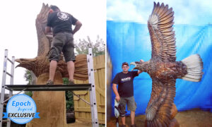 Lithuanian Chainsaw Artist Carves Huge Eagle Spreading Its Wings in Flight out of Logs