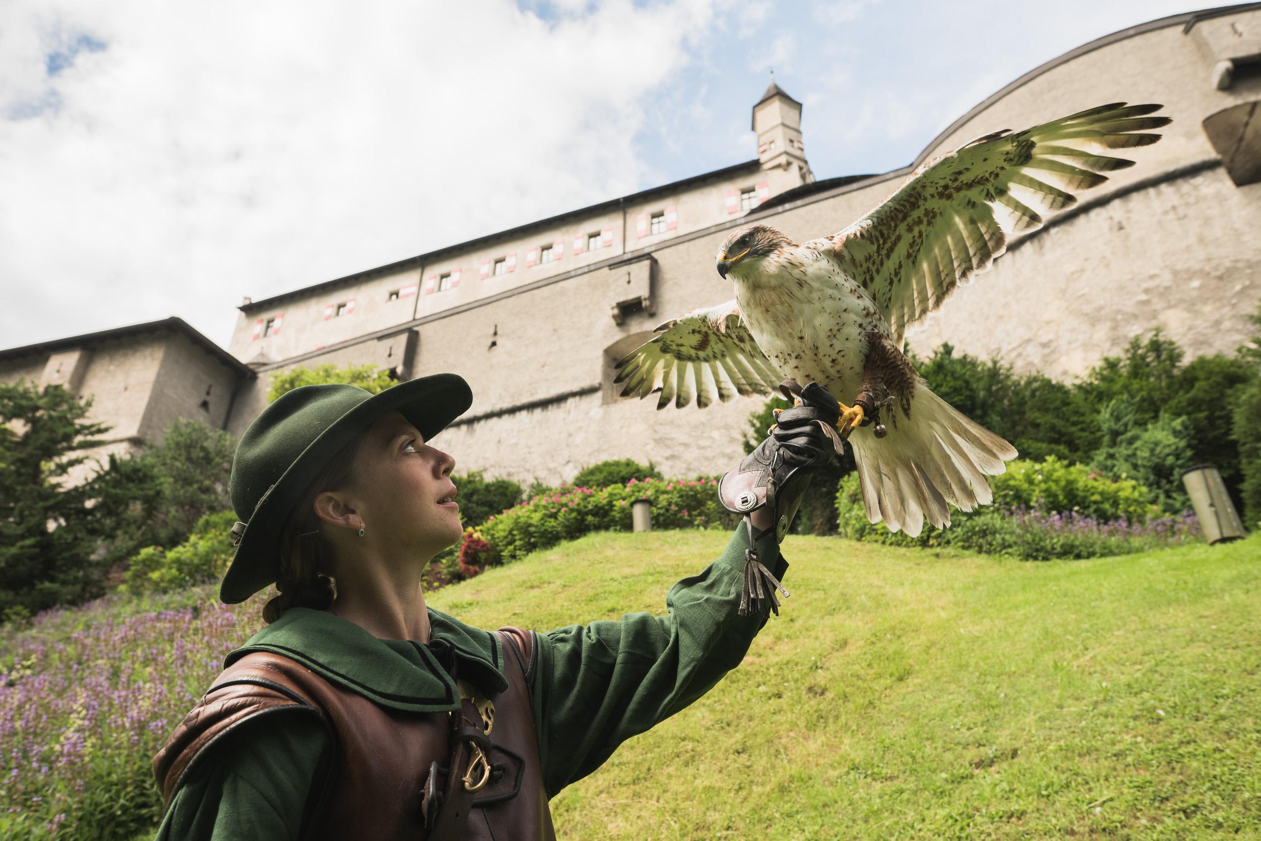 falconer with bird of prey at Hohenwerfen copyright Salzburg Burgen