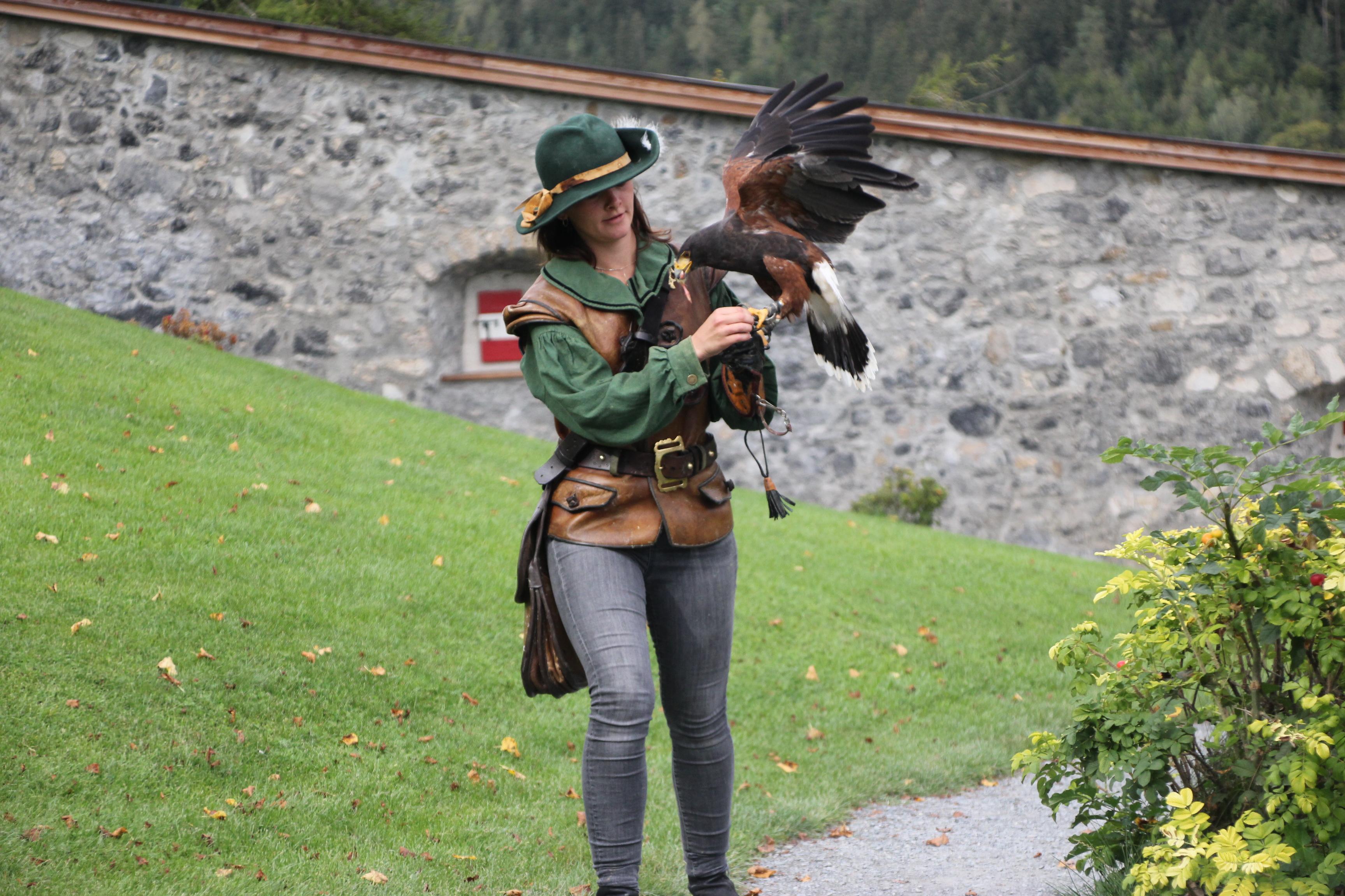 falconry at Hohenwerfen copyright Wibke Carter