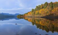 Rewilding Project for Half-a-Million Acres of Scottish Highlands Launched