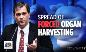 EpochTV Review: The Specter of Forced Organ Harvesting