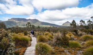 Tasmania to Reopen Border to Most States in Mid-October