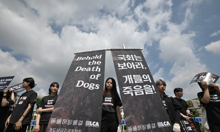 South Korean animal rights activists hold banners during a protest against the dog meat trade in Seoul, South Korea, on July 12, 2019. (Jung Yeon-je / AFP / Getty Images)