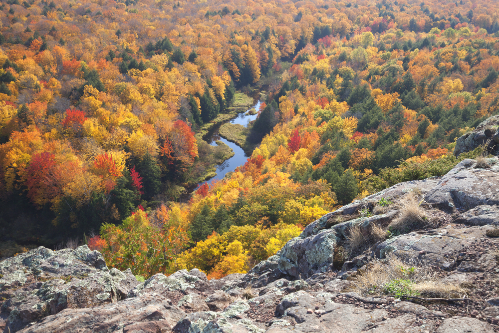 Trees,In,Full,Autumn,Color,And,A,Small,River,Viewed