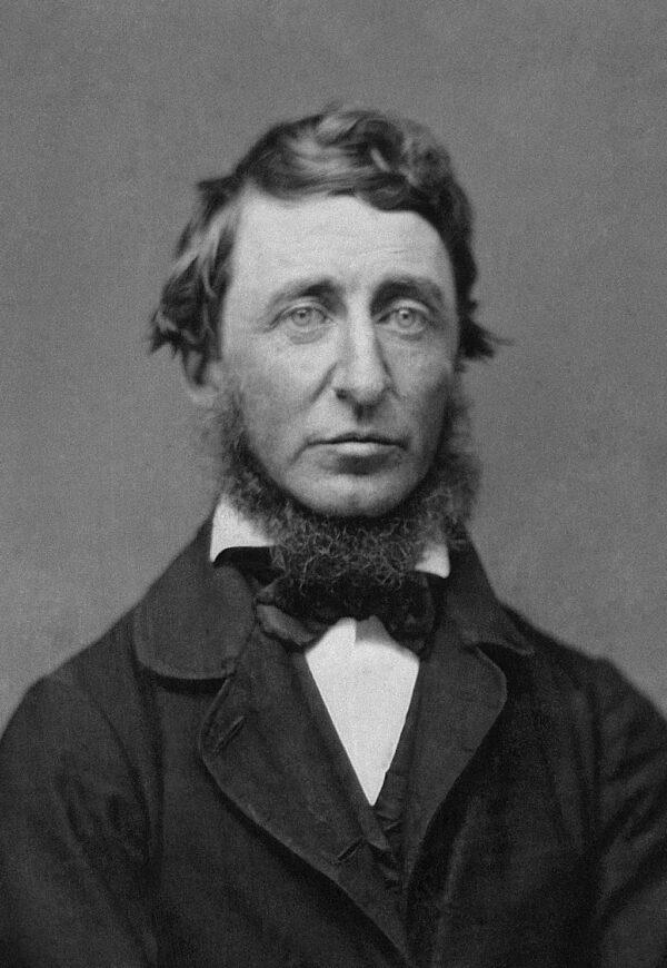 Benjamin_D._Maxham_-_Henry_David_Thoreau_-_Restored_-_greyscale_-_straightened