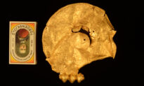Man With Metal Detector Finds Trove of Huge Gold Medallions Dating Back 1,500 Years Ago in Denmark