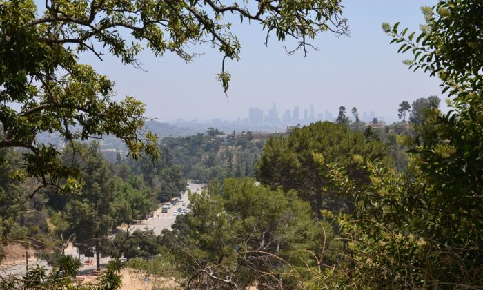 View of Los Angeles from Griffith Park on July 5, 2019. (Steven Lek via Wikimedia Commons/CC BY-SA 4.0)