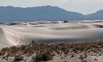 Search the White Sands of Alamogordo, New Mexico