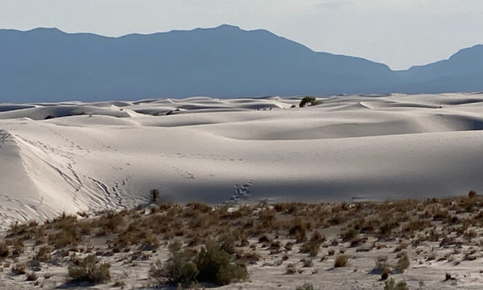 New Mexico's Alamogordo White Sands National Park is the largest gypsum field in the world. (Bill Neely)