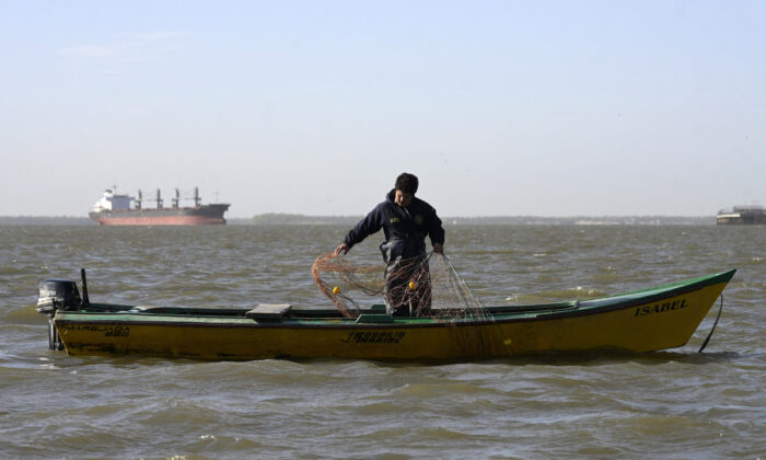 An artisanal fisherman lifts his 200 metre-long fishing net on the Parana River, off the coast of Rosario, Santa Fe, Argentina, on Aug. 23, 2021. (Juan Mabromata/AFP via Getty Images)
