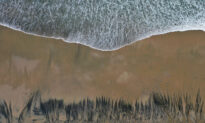 Huntington Oil Spill: Class-Action Lawsuit Filed Against Energy Companies