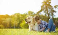 Parenting Matters: The Value of Pets