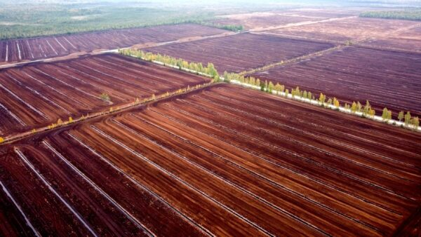 An aerial view of peat fields