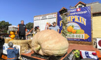 2,191-Pound Washington State Gourd Wins Pumpkin Weigh-Off