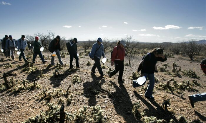 Lugging gallon jugs of water, migrants thread their way along footpaths just north of the Mexico/Arizona border. The numbers of illegal immigrants who have perished trying to cross the southern Arizona desert has reached an historic high this year. (Don Bartletti/Los Angeles Times)