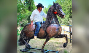 Texas Artist Uses Rusty Scrap Metal to Create Longhorn Bull, Horses, and Other Big Beasts