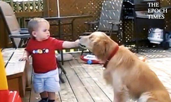 Sweet Little Boy Feeds Blind Dog