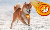 Whales Buy Millions of Dollars Worth of SHIB, as Shiba Inu Prepares to Breakout