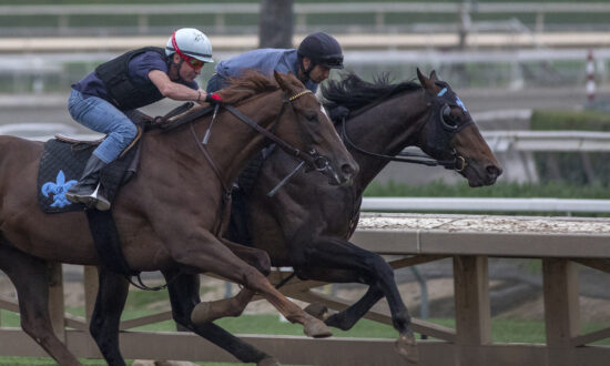 Four Horses Die at Southland Race Tracks in Four Days