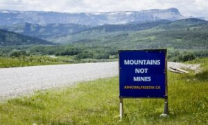 Coal Report on Albertans' Views to Be Delayed One Month, Panel Chairman Says