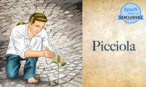 Ancient Tales of Wisdom: Picciola