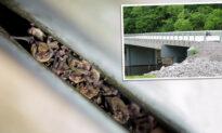 New Bat-Friendly Bridge Replaces Old Kentucky Bridge Home to Thousands of Endangered Bats