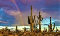 Old West Meets Modern Chic in Scottsdale, Arizona