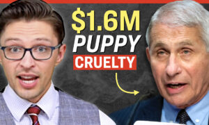Facts Matter (Oct. 25): Fauci's Agency Spent $1.6 Million on Torture-Like Experiments on Beagle Puppies: Report