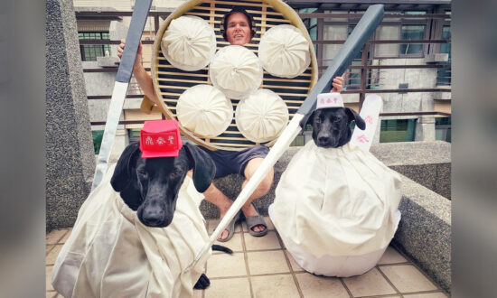 Halloween-Loving Canadian Moves Overseas, Now His Rescued Dogs Wear His Best-Made Costumes