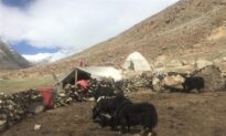 Chinese Nomads Seen in Indian Territory, Indian Nomads Restricted, After Border Conflict