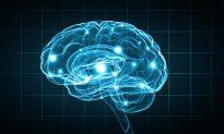 Sydney Researchers Build Dementia Predicting Technology