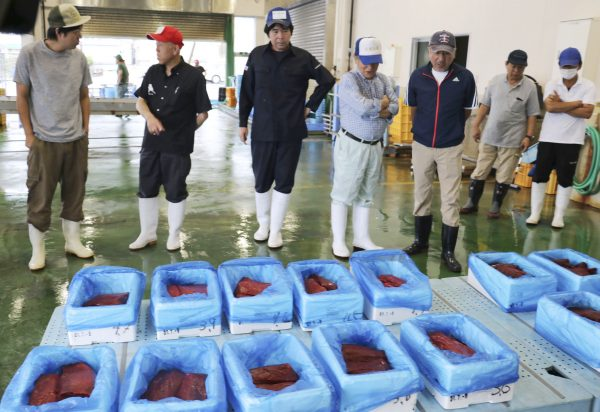 Brokers check whale meat