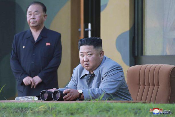 North Korea Projectiles