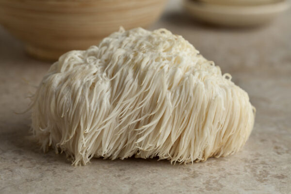 Lion's Mane Mushroom – Unparalleled Benefits for Your Brain and Nervous System